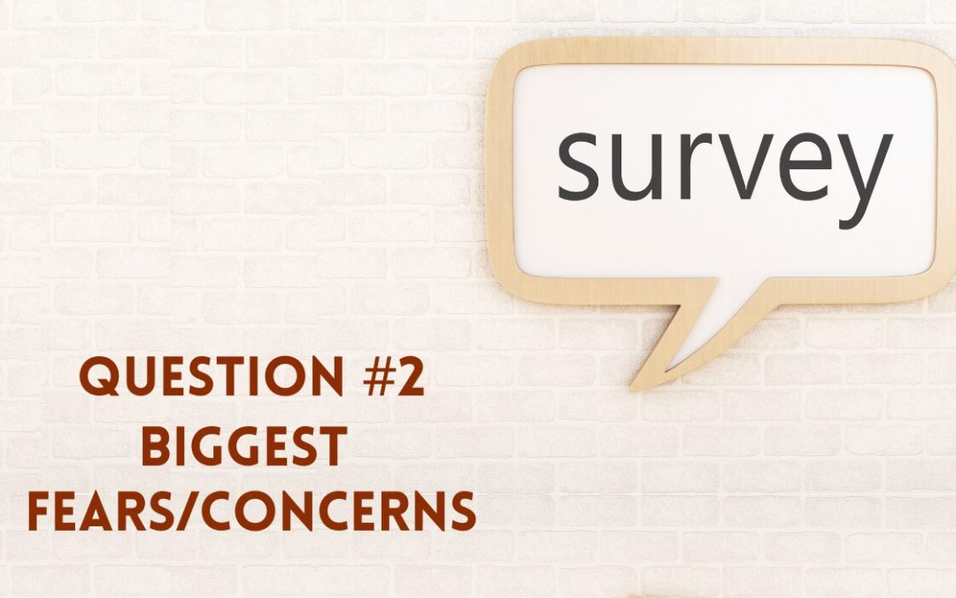 Survey Question 2: Biggest Fears