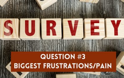 Survey Question 3: Biggest Frustrations